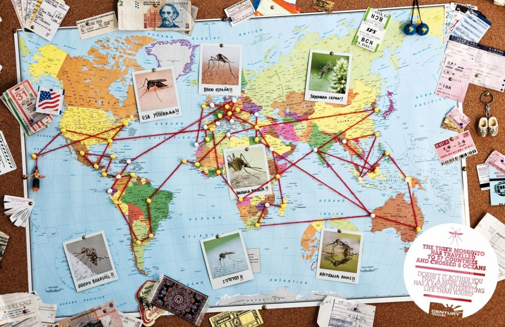 viajes-century-travel-agency-tuberculata-jellyfish-tiger-mosquito-stink-bug-2-ibelieveinadv