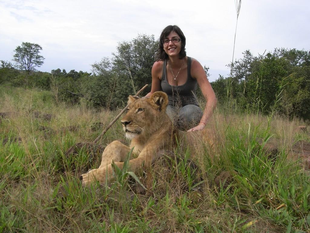 Iria acariciando un león zimbabwe
