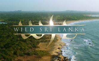 El lado salvaje de Sri Lanka.