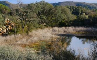 La Laguna de la Dehesa, de Soneja (Castellón), es la única laguna de montaña de la Comunidad Valenciana.