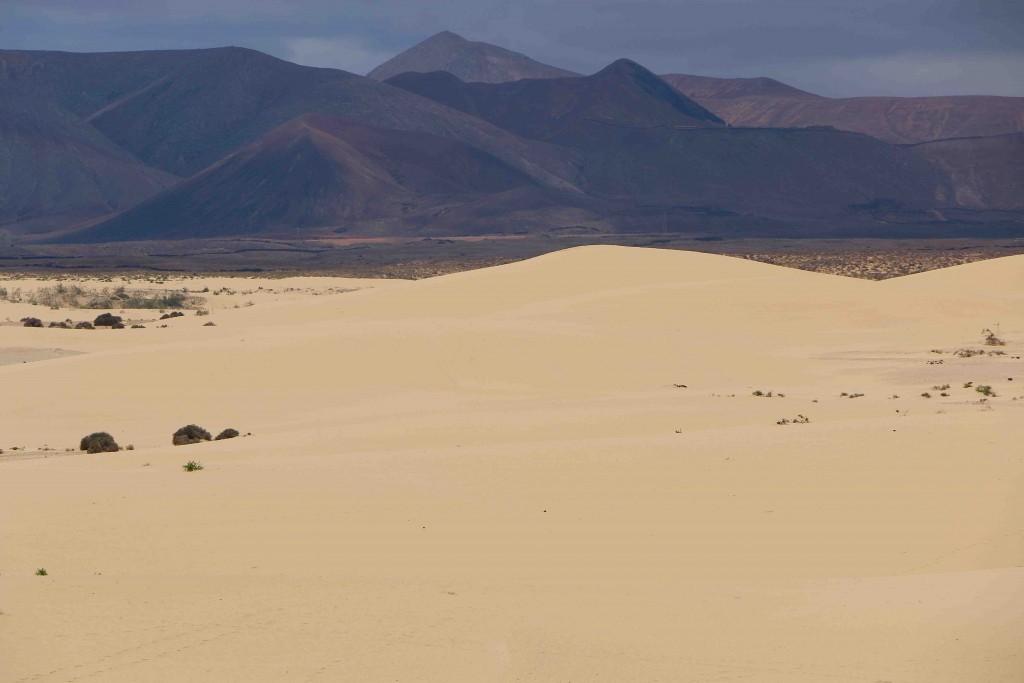 Las dunas del Parque Natural de Corralejo (Fuerteventura) dan paso a montañas volcánicas.