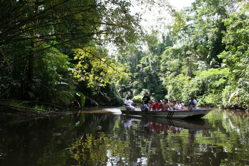 CON MIL OJOS | ENTRE CANALES. Las excursiones en pequeñas lanchas te adentran a los canales más recónditos y llenos de fauna. Tendrás que ir con mil ojos para no perderte a ese caimán que acecha bajo tu canoa.